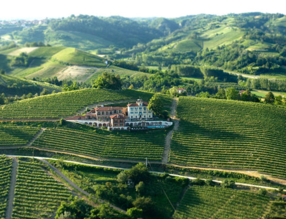 Most Scenic Vineyards for Wine Tasting